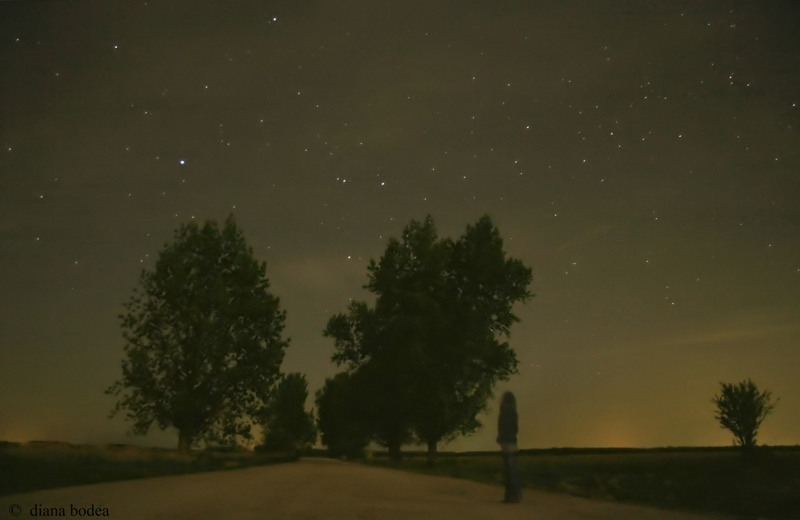looking at the stars
