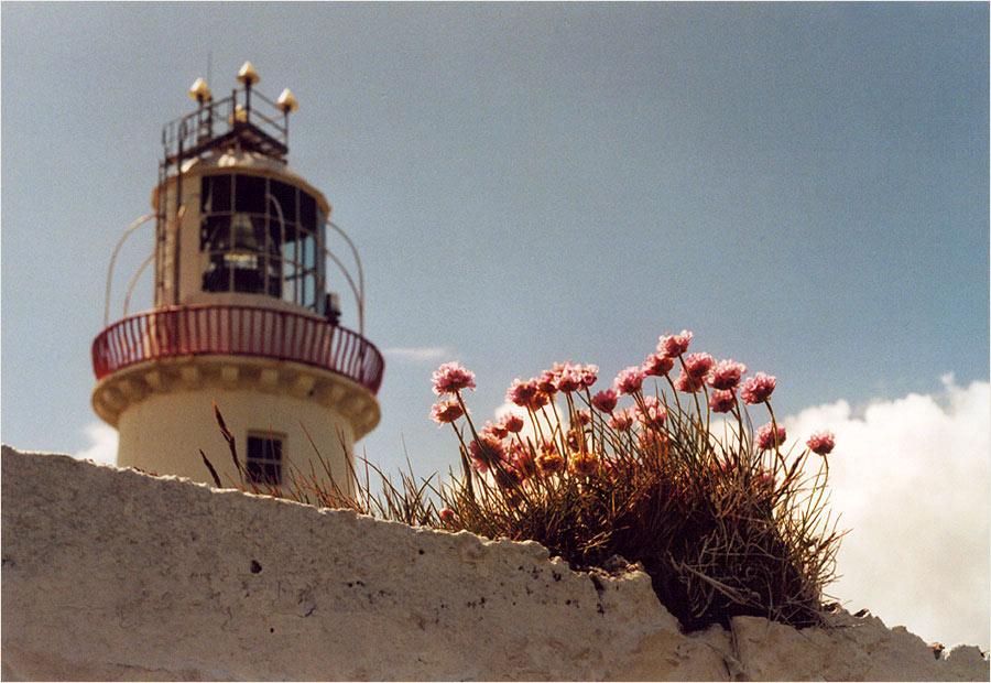 [Loop Head Lighthouse]