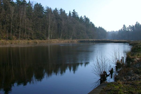 Lopauer See
