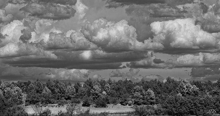 L'orage en dégradés de gris