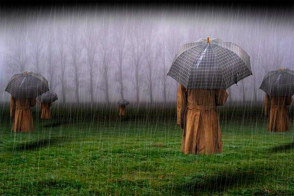 lords of rain