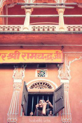 L'Orfanotrofio di Jaipur - India