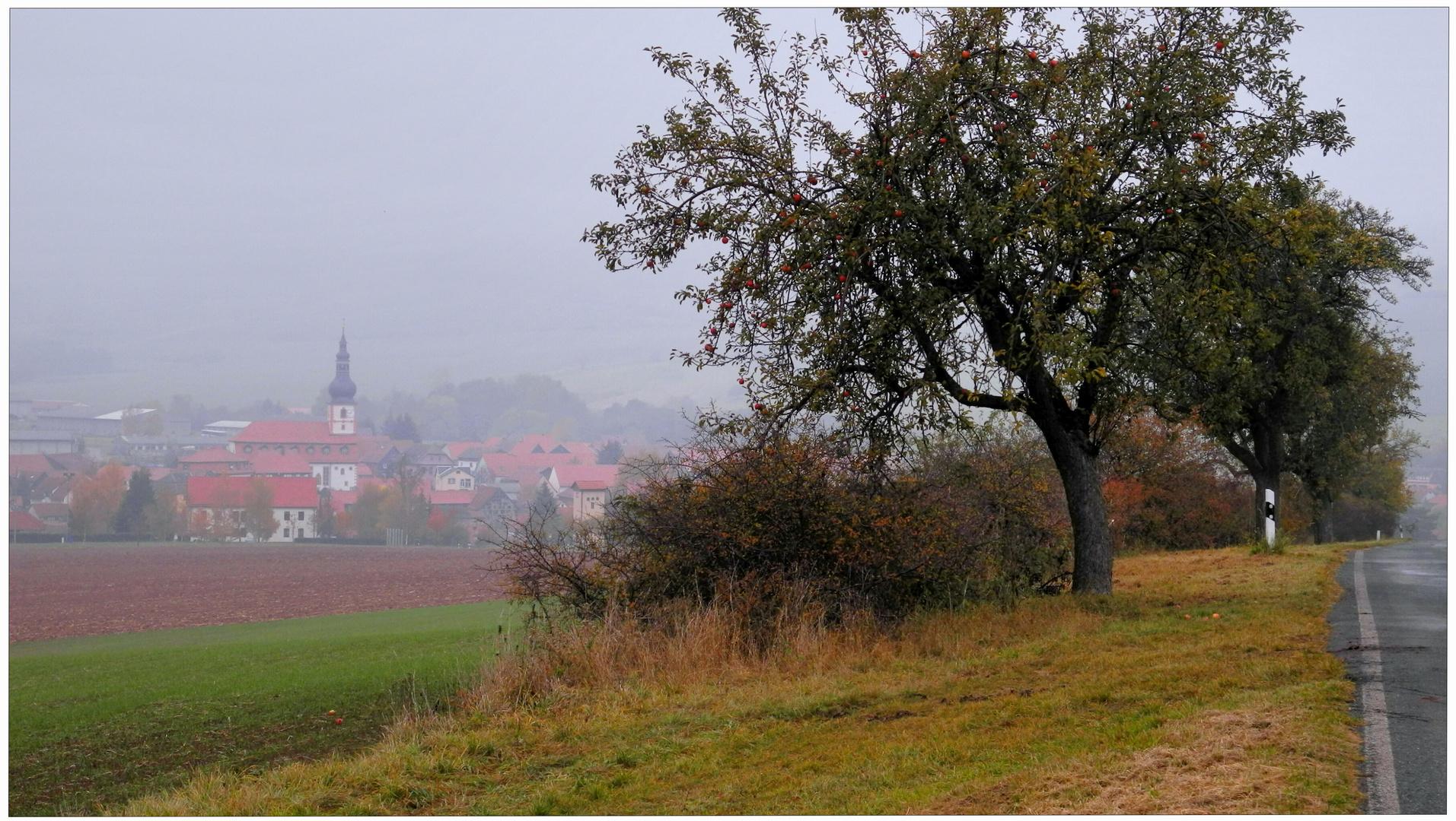 Los colores del otoño IV, el camino a mi pueblo