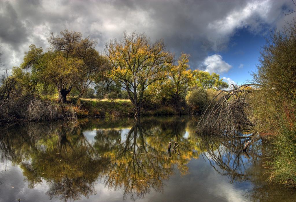Los reflejos del otoño