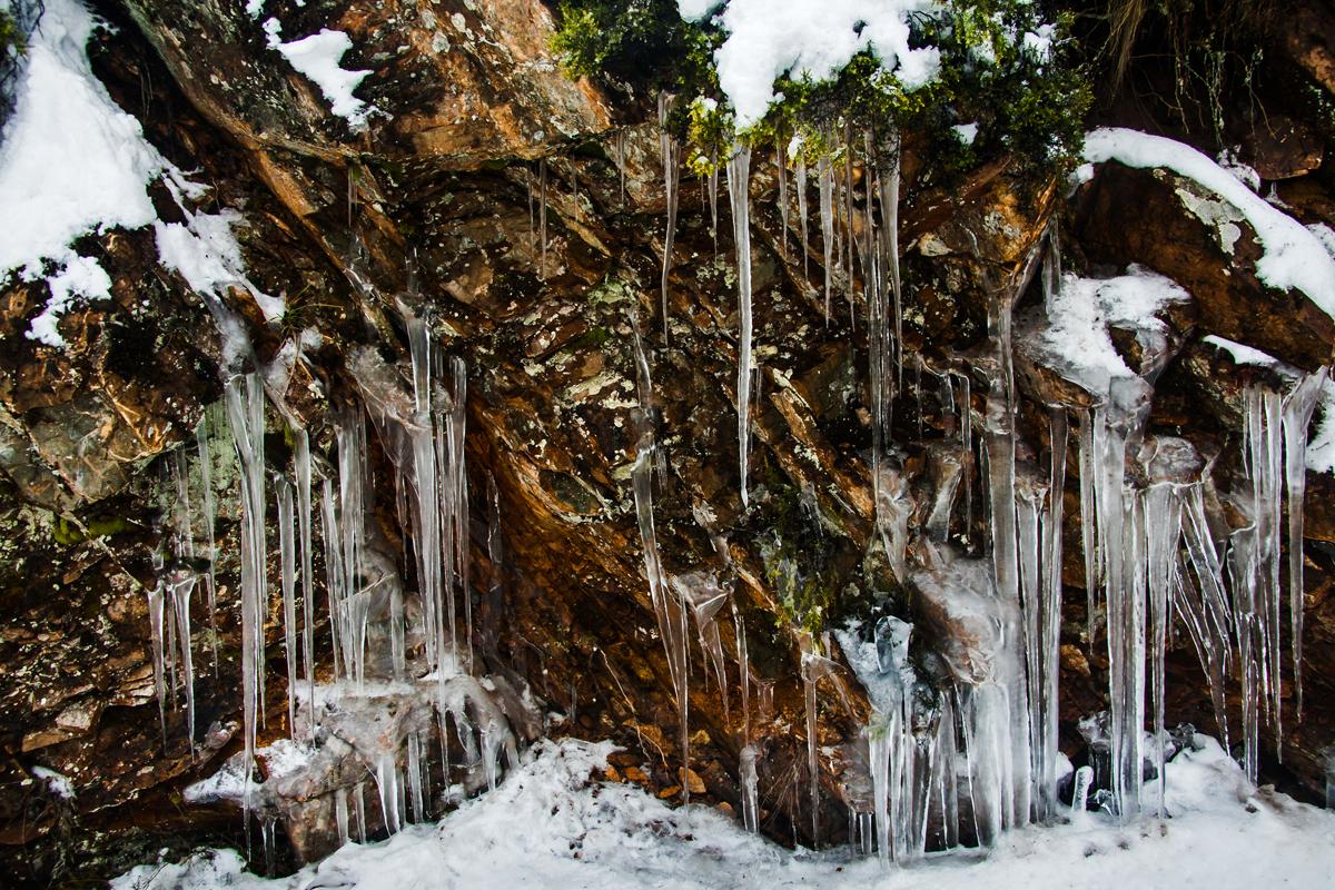 Los rigores del invierno