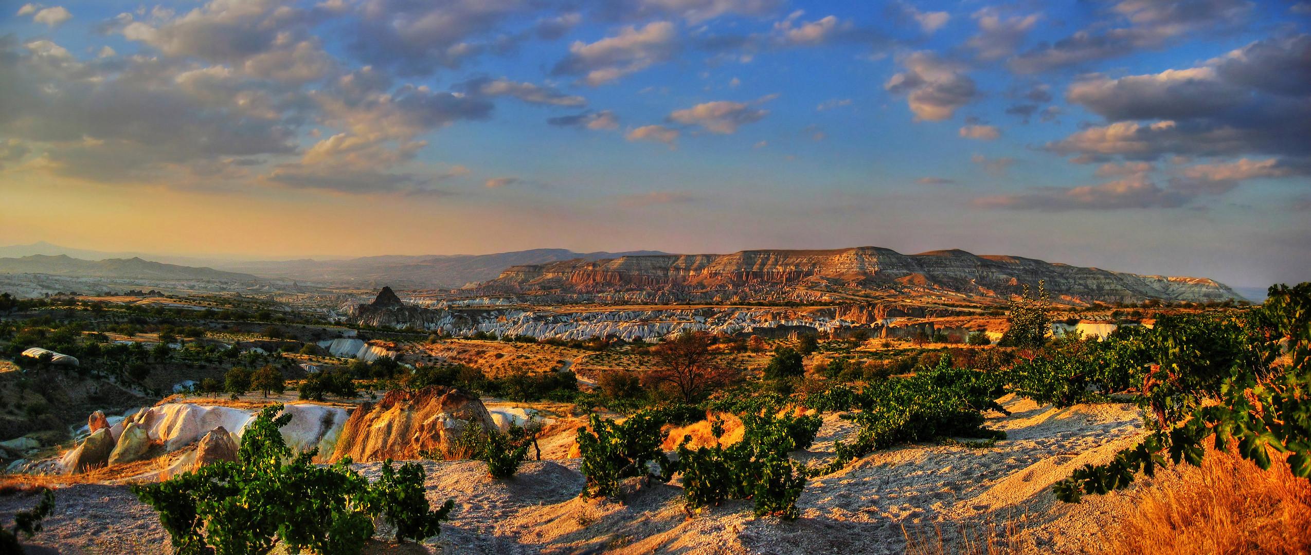 Los viñedos de la Capadocia