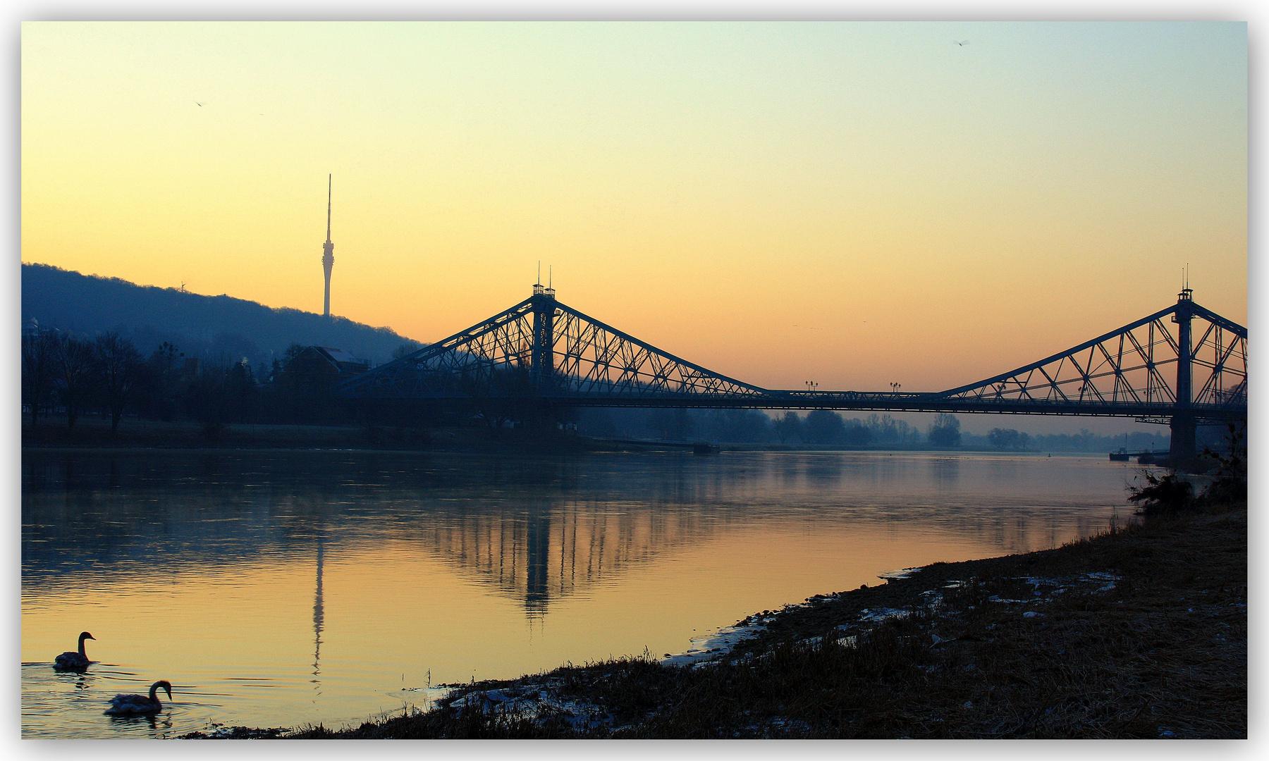 Loschwitzer Brücke I
