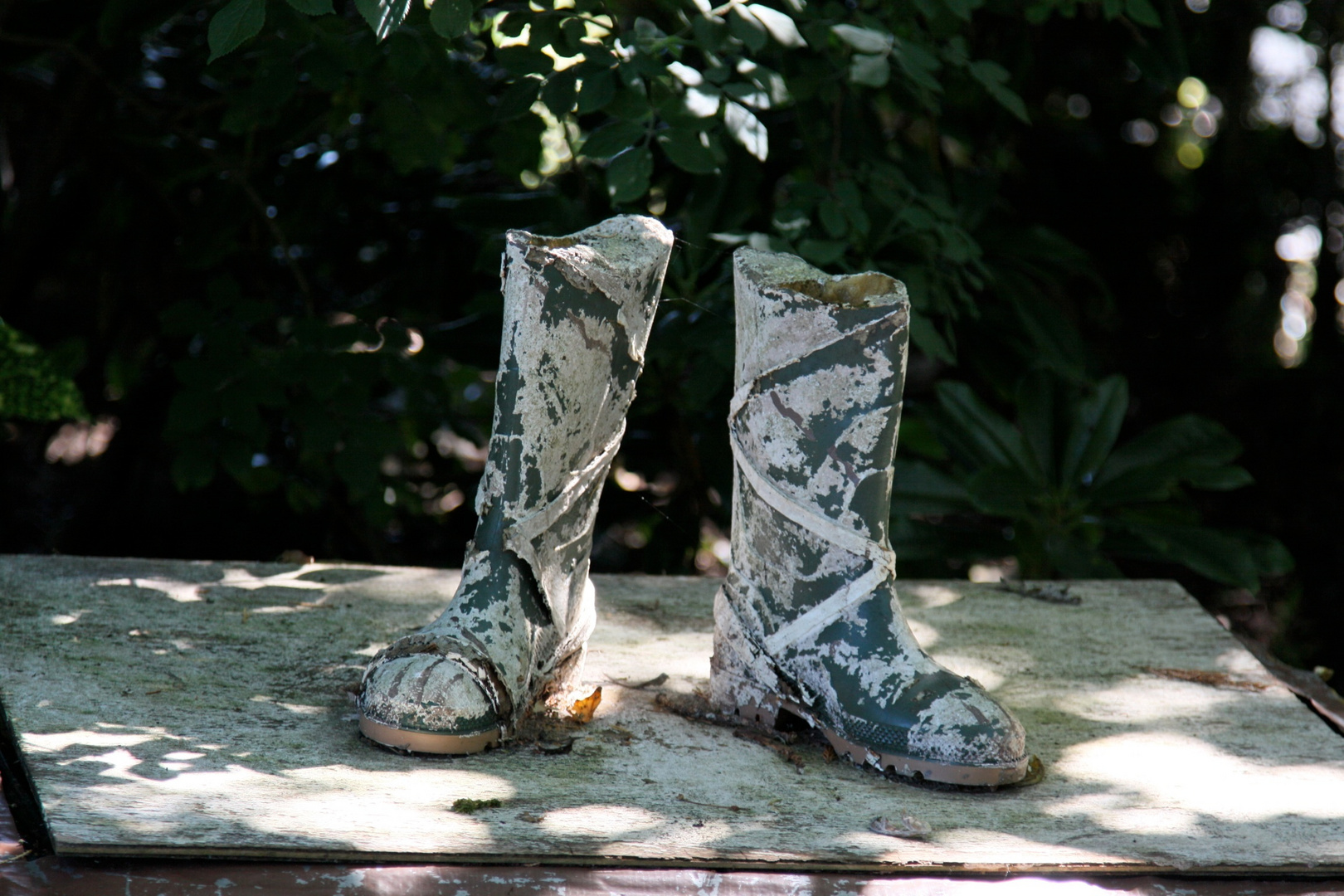 Lost Boots...