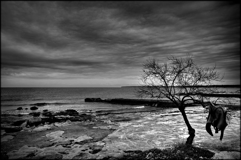 """""""Lost"""" di Antonio Morri"""