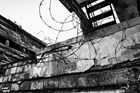 Lost Places - Alte Molkerei 2