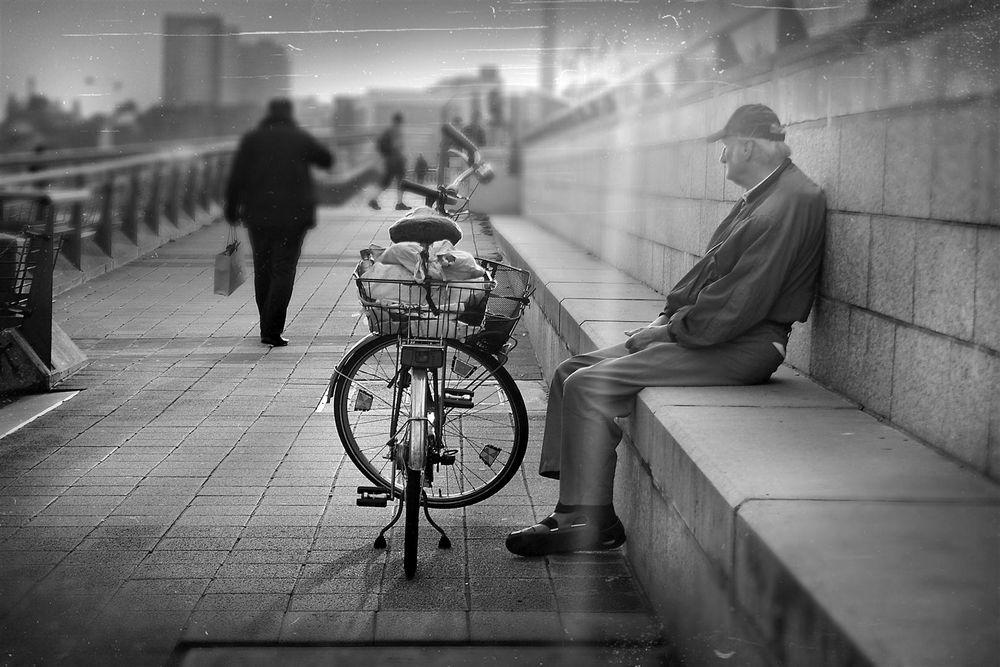lost summer by Danna Sova