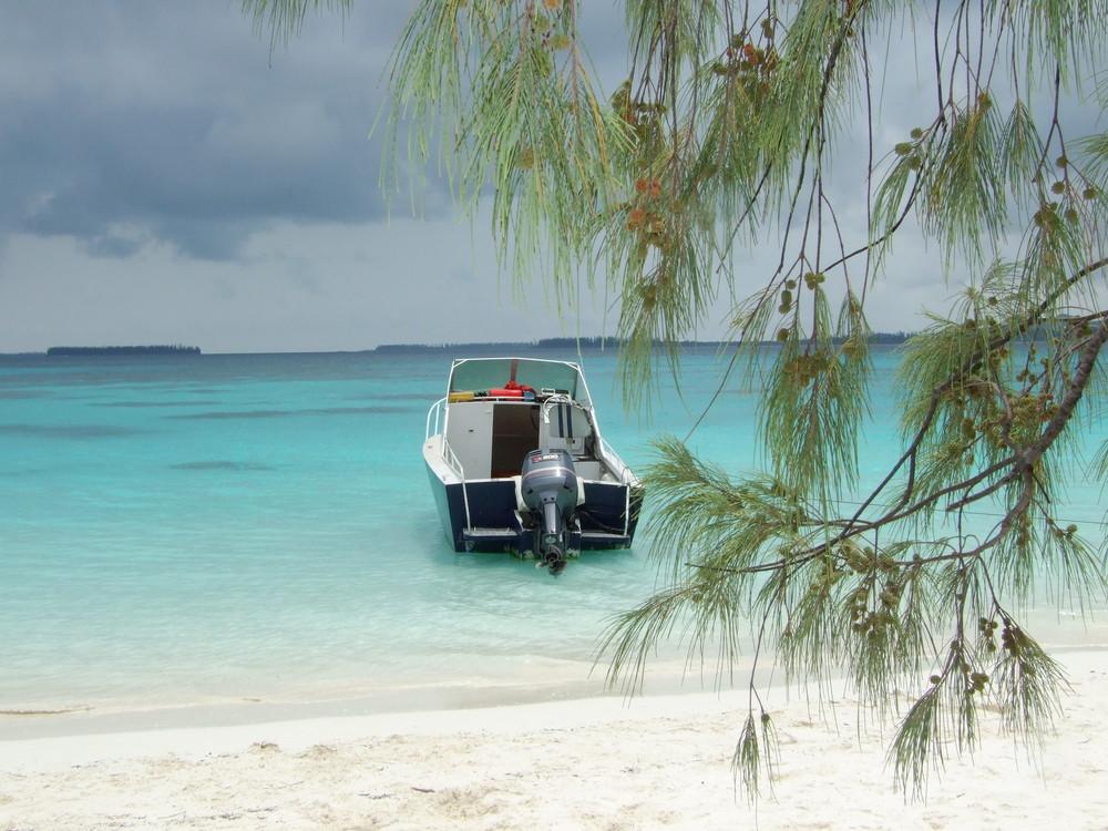 îlot Brosse