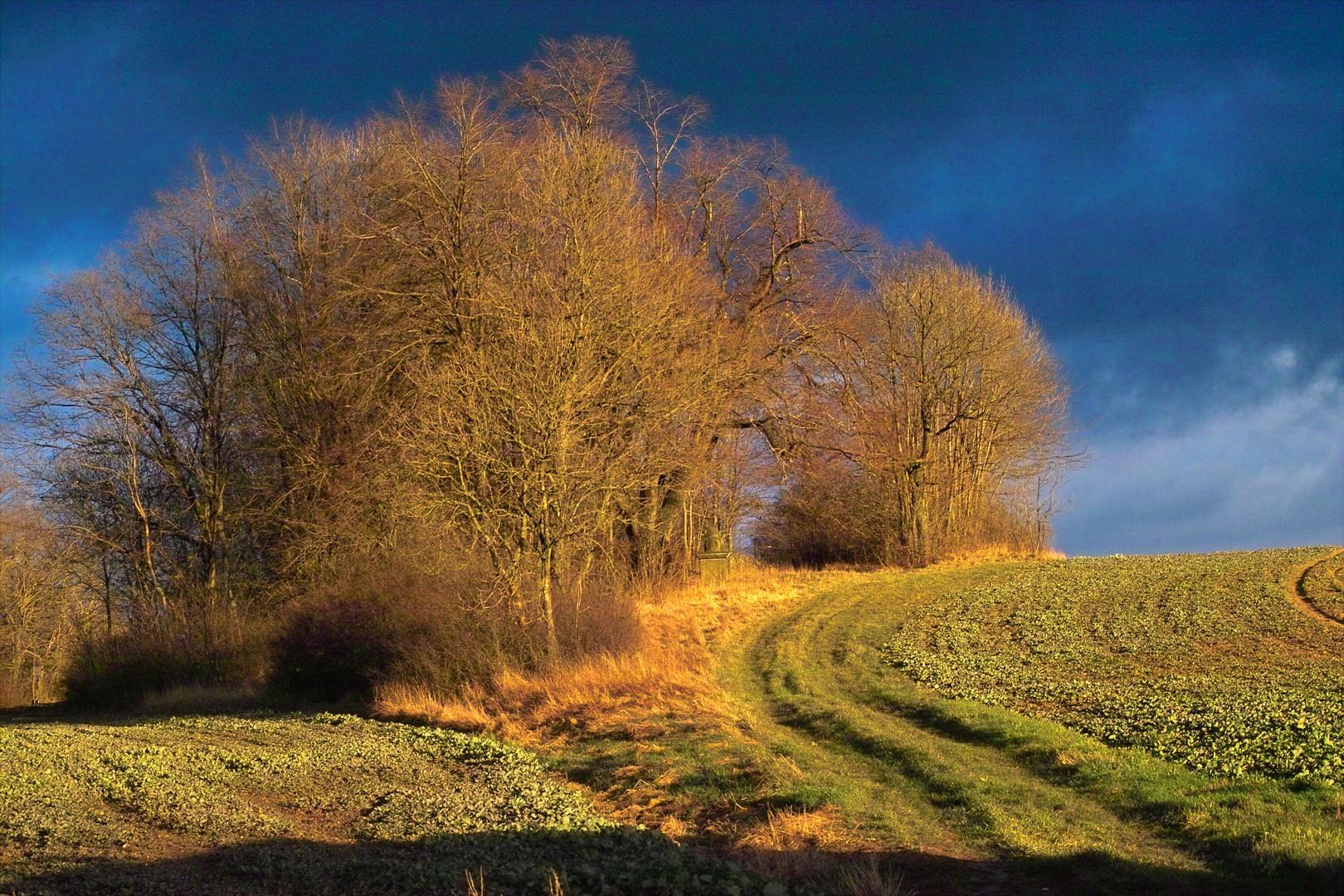 Lothringer Land