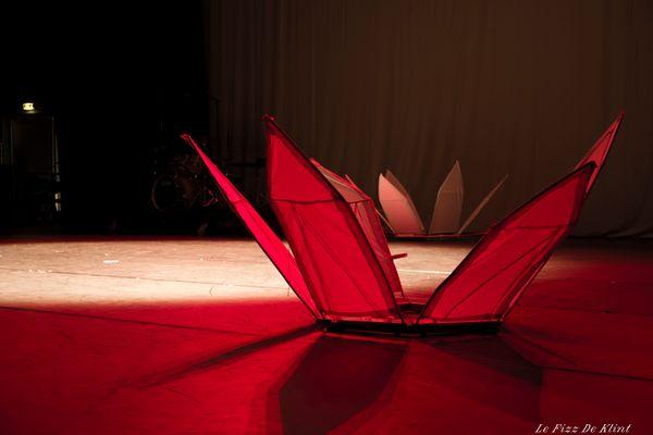 Lotus en Lumiere