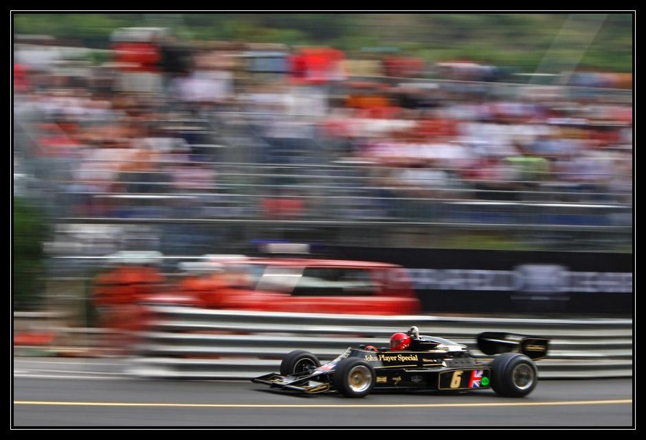Lotus in schwarz und gold