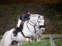lou-chevaux