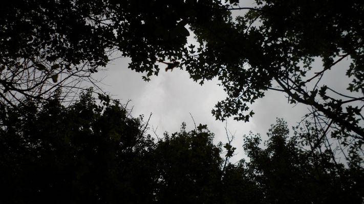 l'ouverture vers le ciel