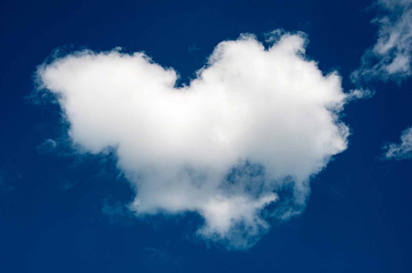 Love is in the Air ...