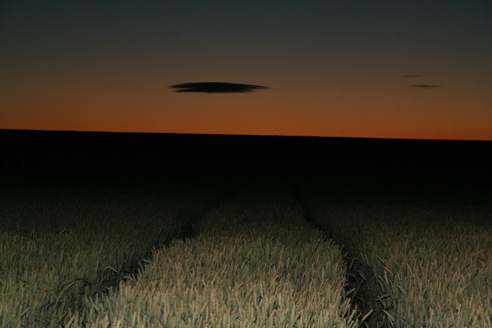 l'ovni dans les blés
