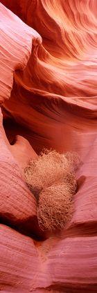 Lower Antelope Canyon (II)