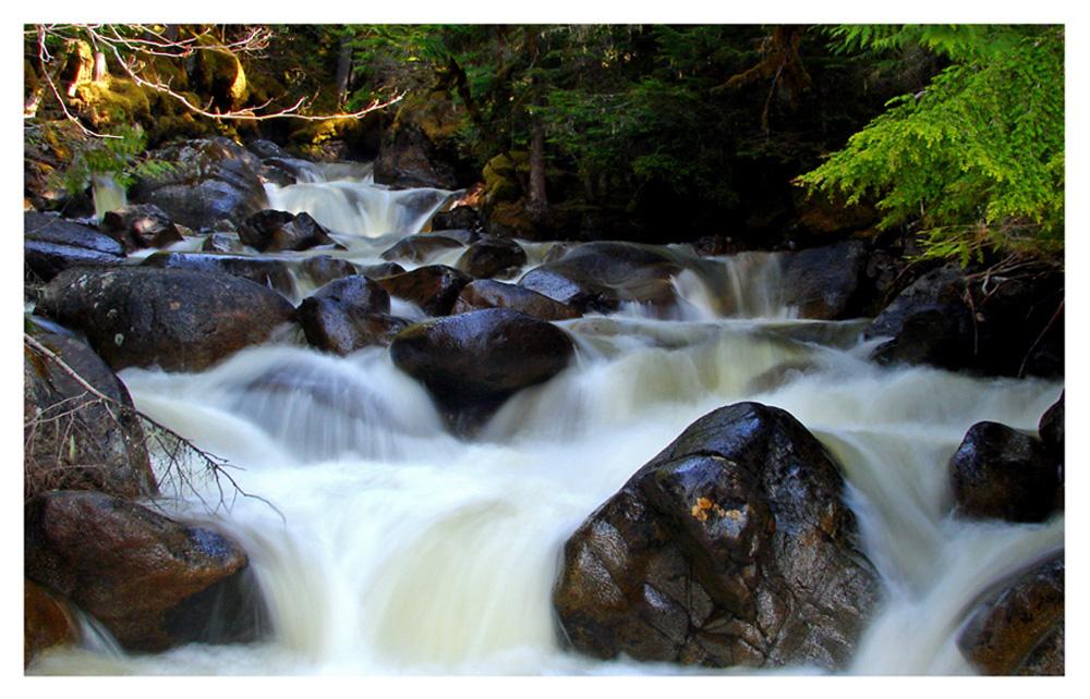 Lower Joffrey Creek