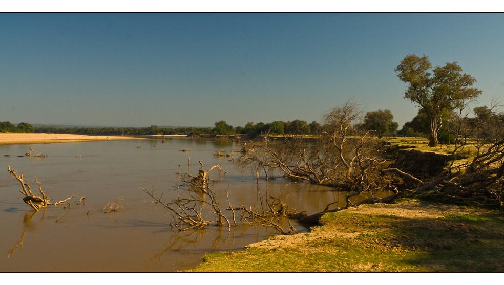 Luangwa River/Zambia