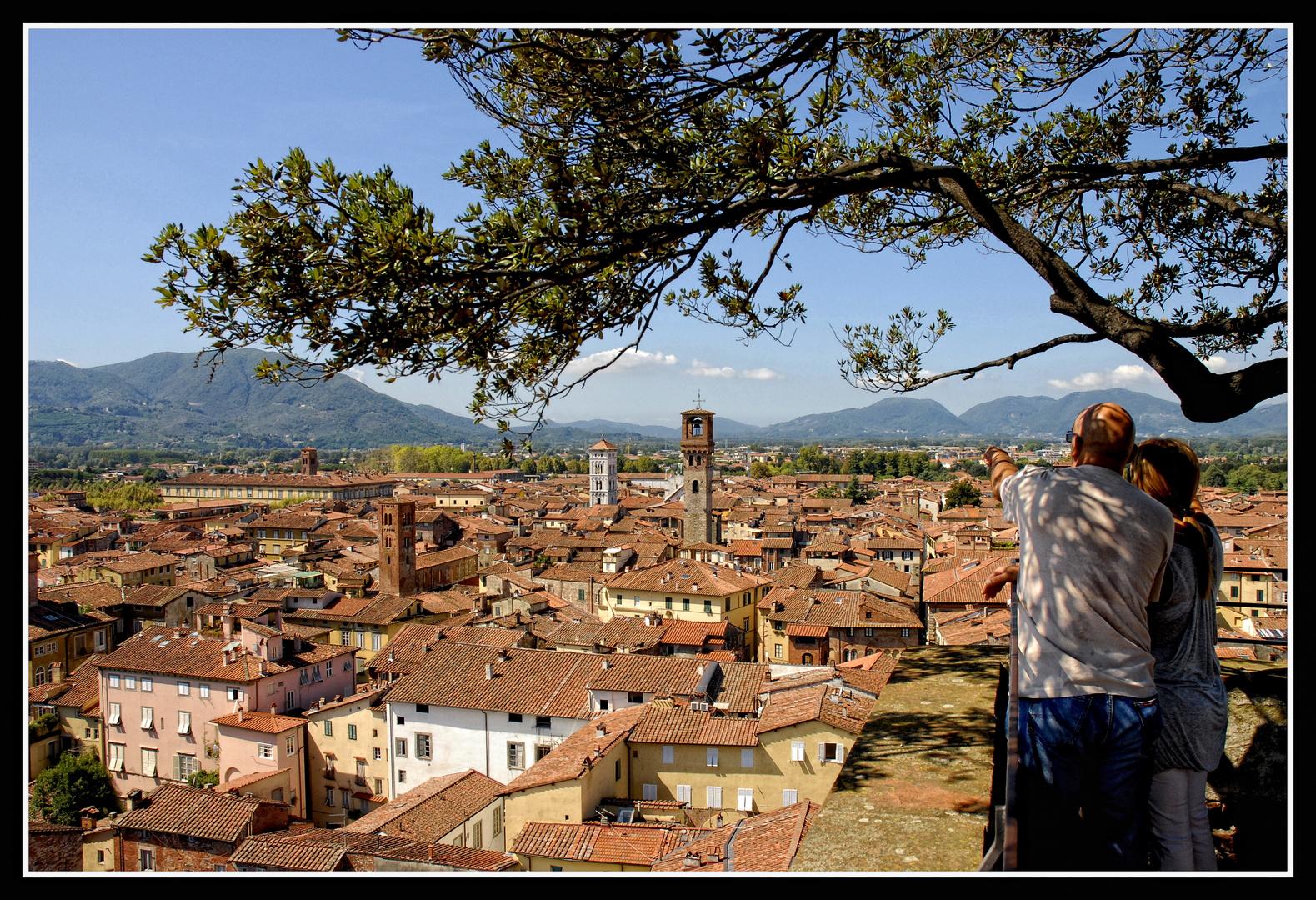 Lucca - Blick vom Torre Guinigi