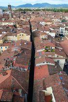 Lucca von Oben