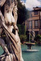 Lucca/Toscana - Garten