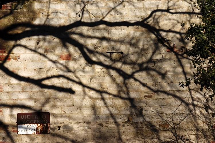 Luce ed ombre a Bandella 2