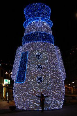 Luces de la navidad