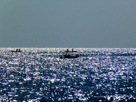 Luci di mare