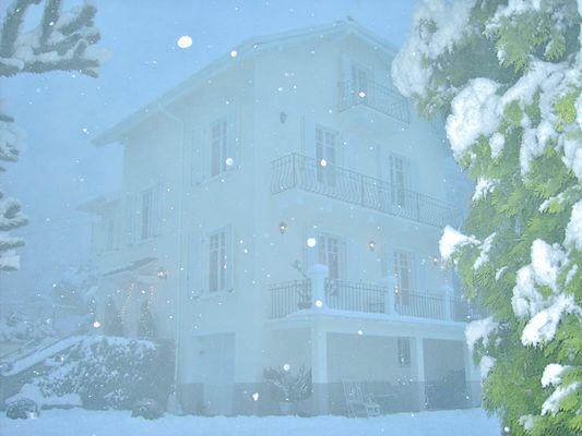 Luci d'inverno