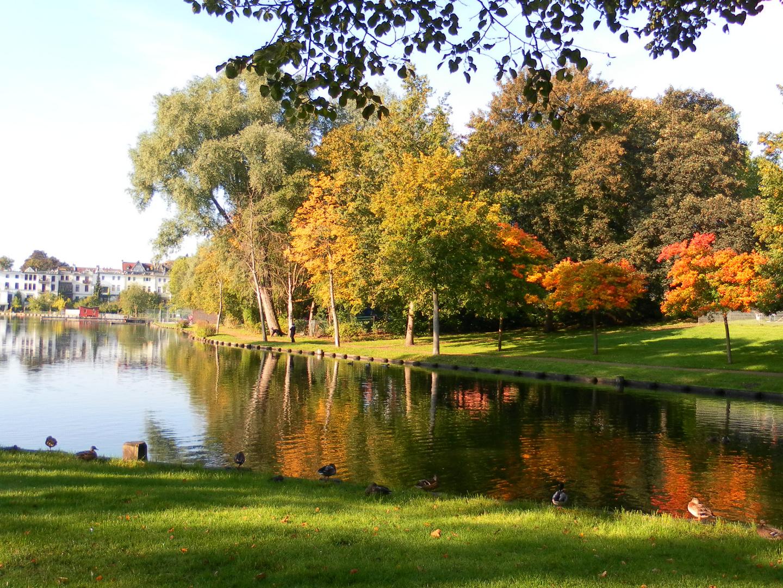 Lübeck - Herbst - buntes Treiben