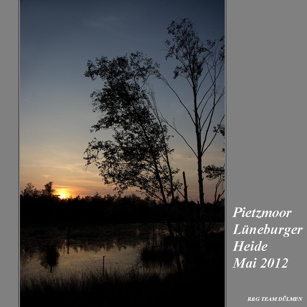 Lüneburger Heide 02