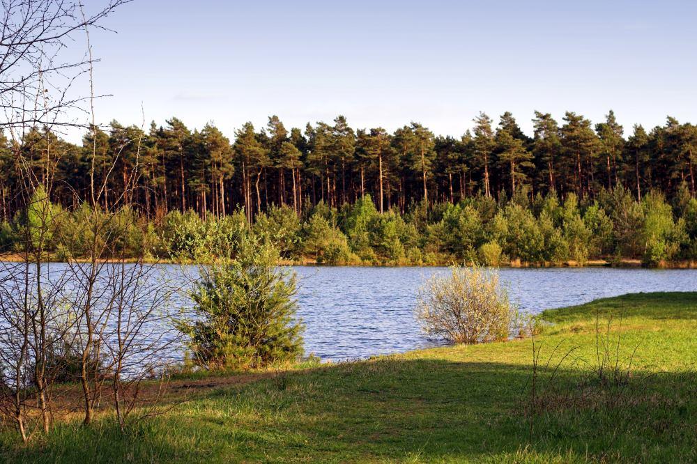 Lüneburger Heide, Kiesgrube