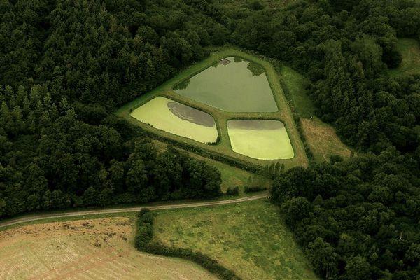 Luftaufnahme Bretagne / Fischbecken