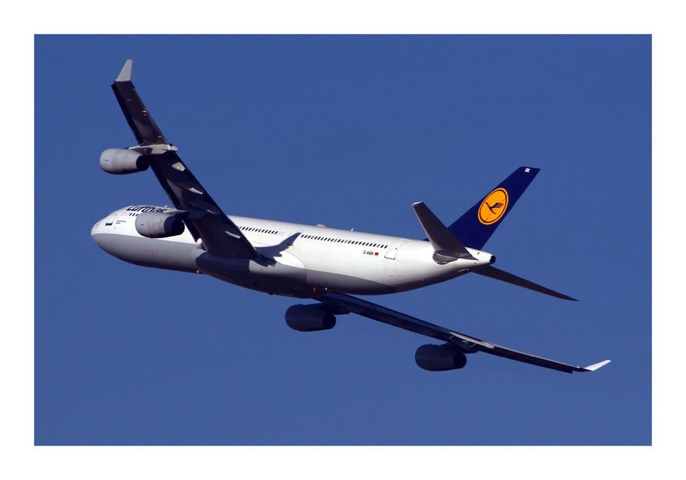 Lufthansa Airbus A340-311 (D-AIGK)