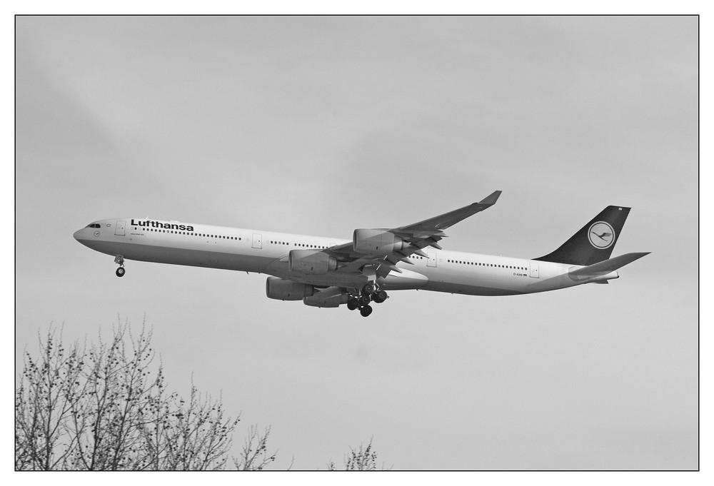 Lufthansa Airbus A340-642 (D-AIHI )