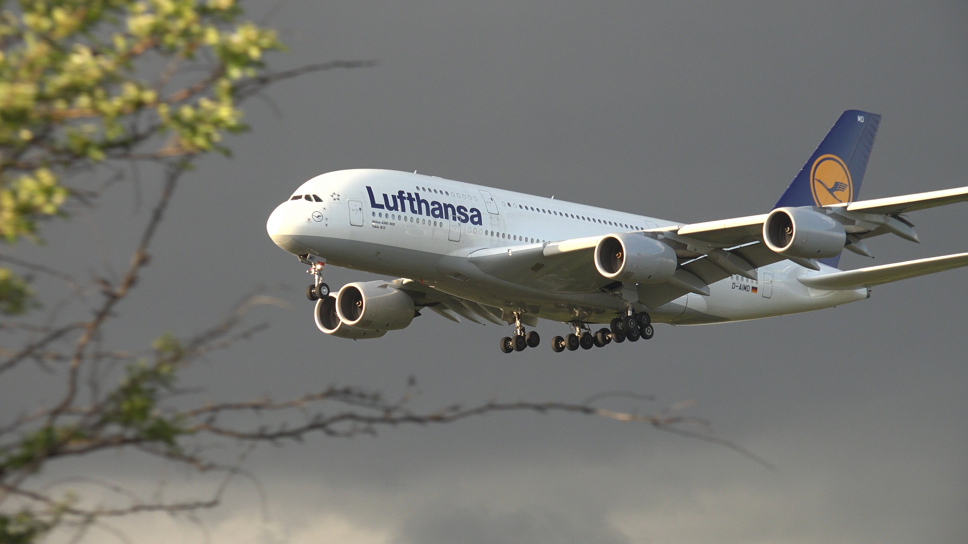 Lufthansa Jet A380-800 - Im Landeanflug auf Frankfurt.