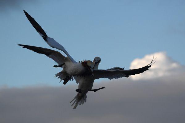 Luftraum Helgoland