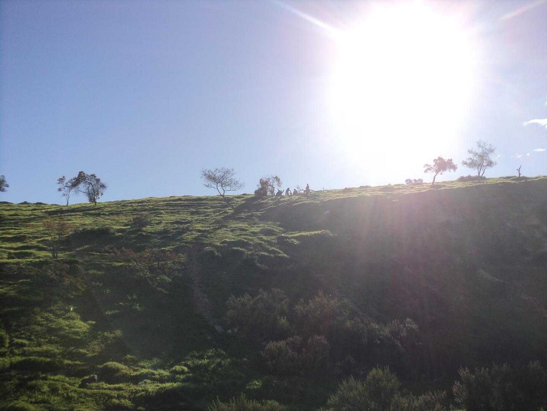 Lugar verde