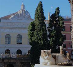 Lui abita a Roma...