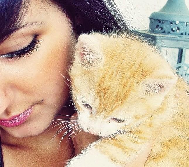 Lullaby et moi.