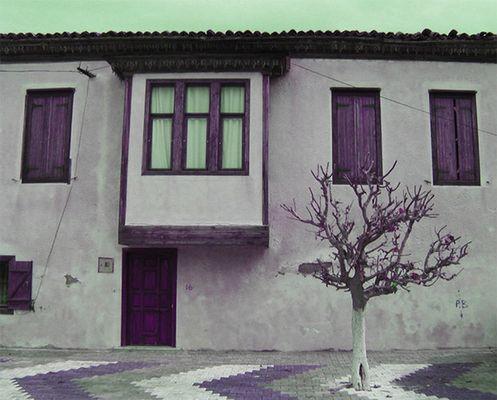 l'ultima casa / my endstation