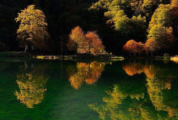 Lumière d'automne...