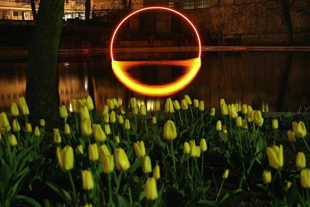Luminale 2010, Lichtbogen