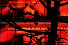 Luminale - Rot an der Hauptwache