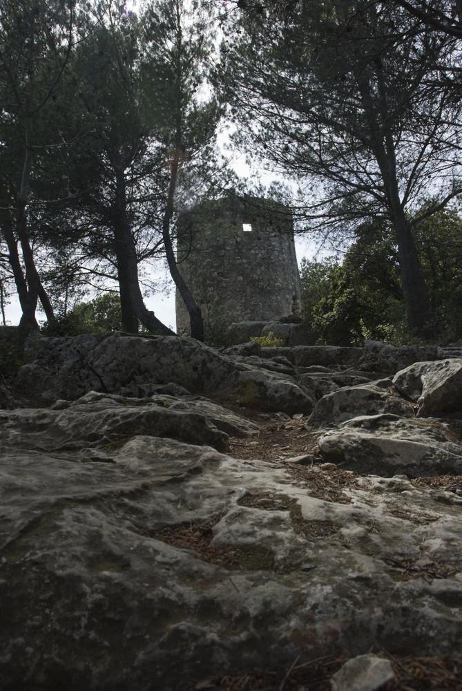 L'un des Quatres Moulins de Fontvieille