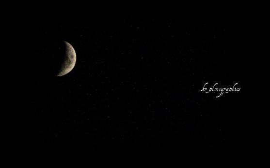 luna de malaga
